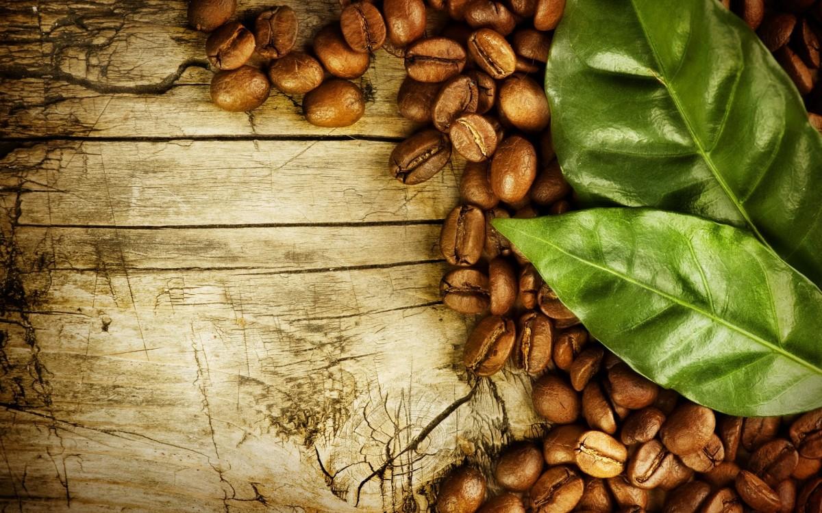 Cum se vede lumea prin ochii unui cultivator decafea